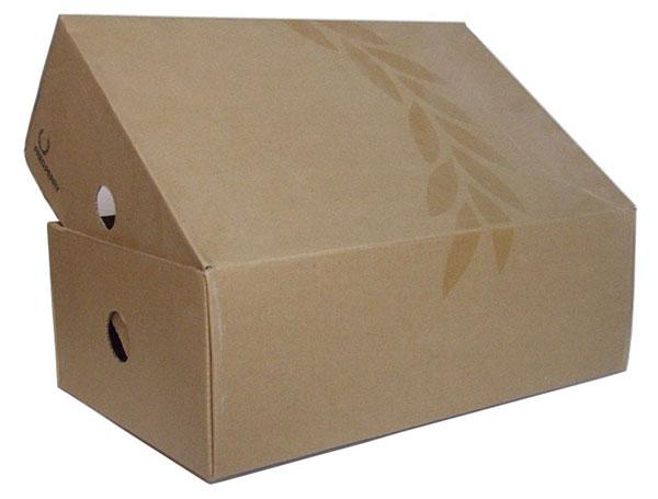 In hộp giấy đựng giày ở TPHCM