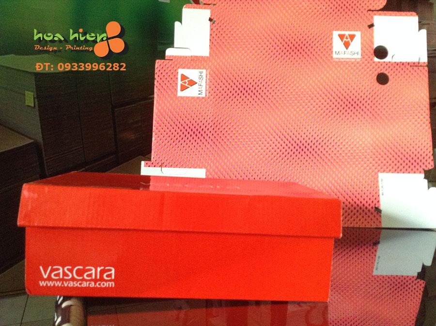 Hộp đựng giày Vascara